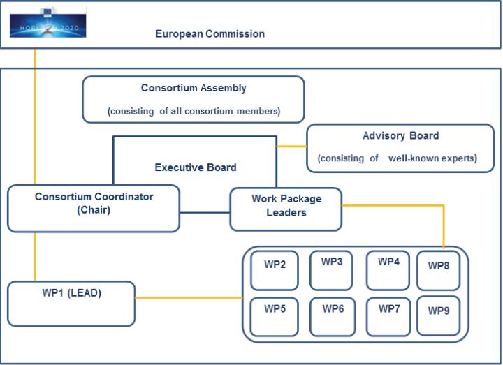 Consortium Structure Peacecapacity